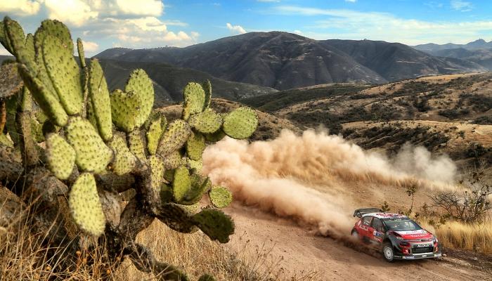 źródło: Citroen Racing Media